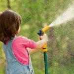 Proper watering in Grapevine