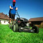 Worst lawn problems