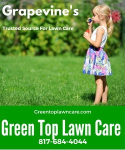 Green Top Lawn Care