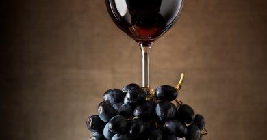 Grapevine WineFest