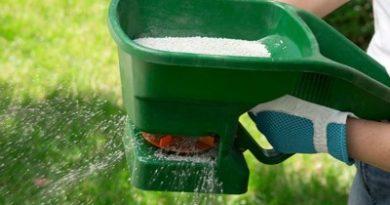 Lawn Fertilizer Grapevine